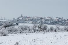 Zasněžené Traviny
